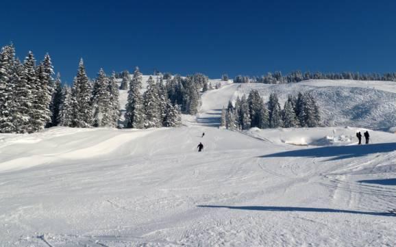feldkirch gr e der skigebiete beste skigebietsgr e im. Black Bedroom Furniture Sets. Home Design Ideas