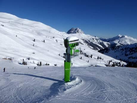 schneesicherheit salzburger land schneesichere skigebiete salzburger land. Black Bedroom Furniture Sets. Home Design Ideas