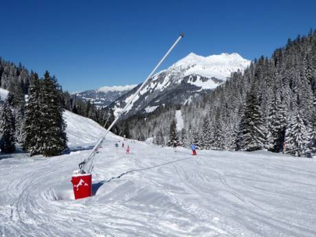 schneesicherheit montafon schneesichere skigebiete. Black Bedroom Furniture Sets. Home Design Ideas